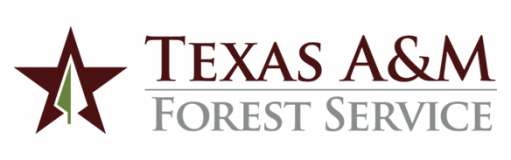Texas AM Forest Service